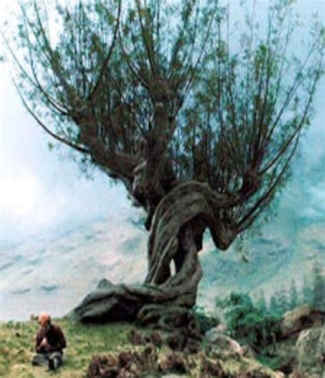 whomping willow tattoo the whomping willow from harry potter possible