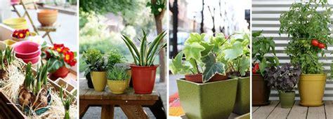 vasi porta piante vasi vipot porta piante onfuton