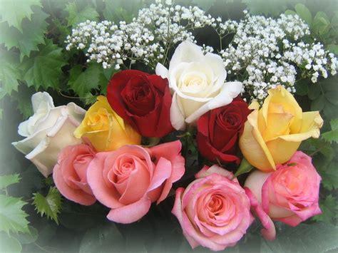 michel bouquet einstein des anciens rallymen 224 votre 233 coute page 11764