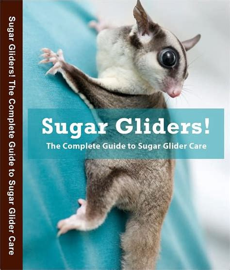 Sugar Glider Series sugar gliders the complete guide to sugar glider care by green nook book ebook