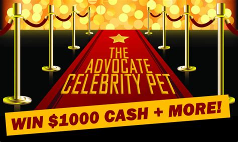 Nz Competitions Win Money - theedge co nz win 1000 cash plus more gimme co nz