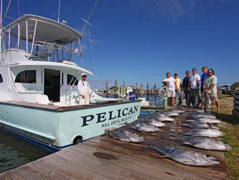 pelican charter boat oregon inlet the outer banks north carolina offshore and inshore