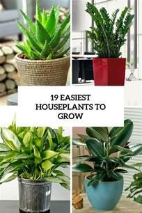 easy to grow indoor plants gardening indoors archives gardenoholic