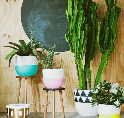 schöne große zimmerpflanzen sch 246 ne zimmerpflanzen so dekorieren sie ihr zuhause mit