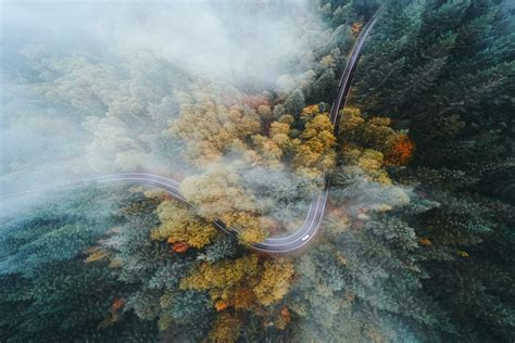 landscape nature oregon forest road highway fall