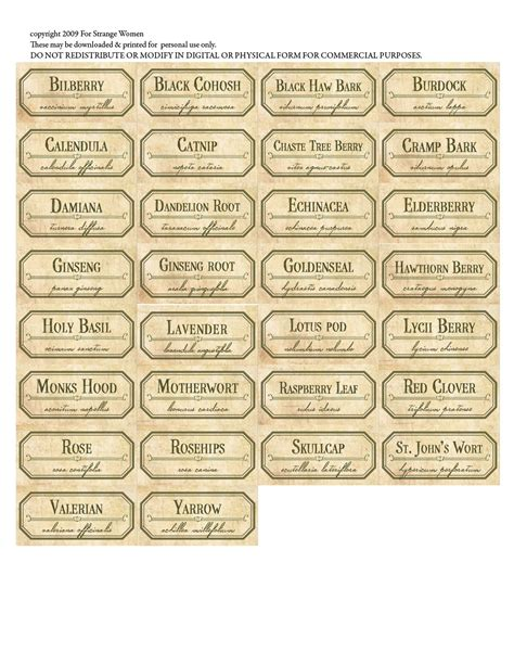 Kitchen Canister Labels by For Strange Women Diy Spice Jar Labels A Free Download