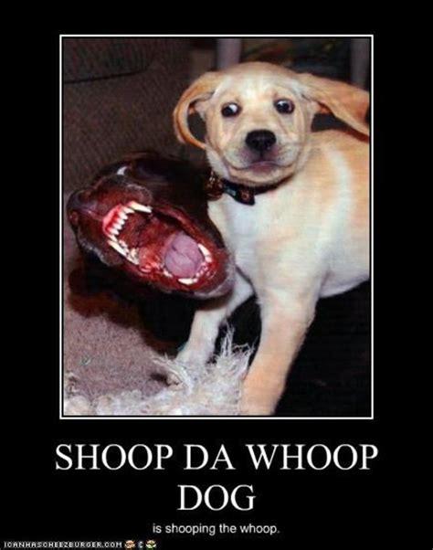 Shoop Da Whoop Meme - image 103391 shoop da whoop i m a firin mah