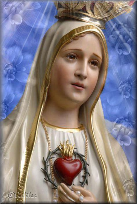 imagenes originales de la virgen santa mar 237 a madre de dios y madre nuestra im 225 genes
