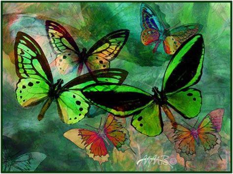 1604 green butterfly images wallpaper walops com green butterfly wallpaper wallpapersafari