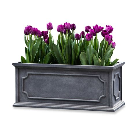 large window box 9 best window boxes for summer 2017 window boxes and