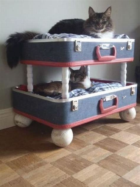 Bunk Beds For Cats Cat Bunk Beds 1funny