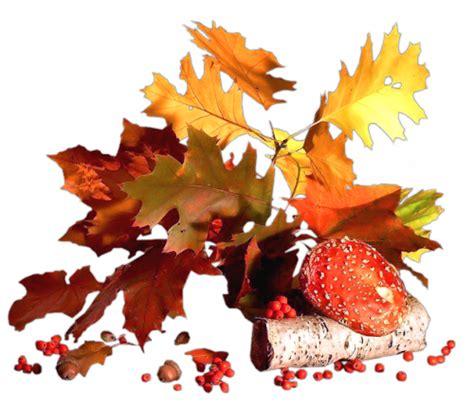 feuille de m駘amine cuisine arbres et feuilles page 3