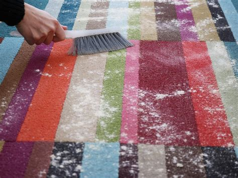 rug cleaning at home how to clean carpet at home yourself 2 about lifestyle issues