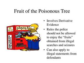fruit of the poisonous tree fruit of the poisonous tree pictures to pin on