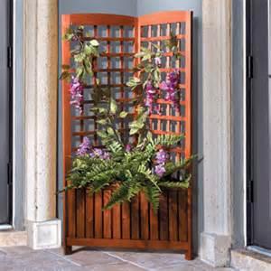Corner Garden Trellis Acacia Corner Trellis With Planter Box Betterimprovement