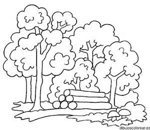 dibujos colorear bosque az dibujos colorear