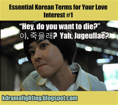 Korean Meme - essential korean terms for love interests guest post at viki