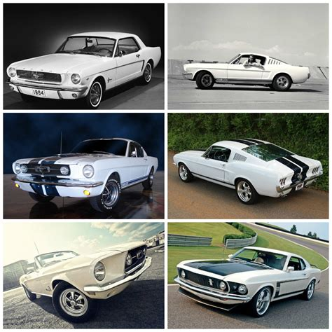 evolution mustang ford mustang evolution montage carponents