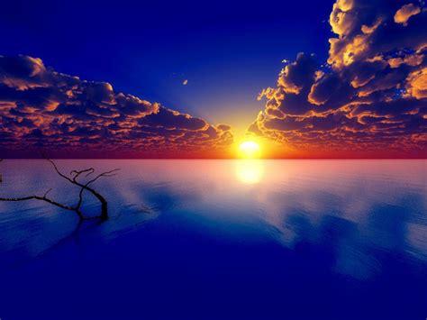 beautiful horizon  wallpaperscom