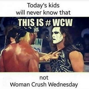 Wcw Meme - why wcw is important and why it can also be seen as bad