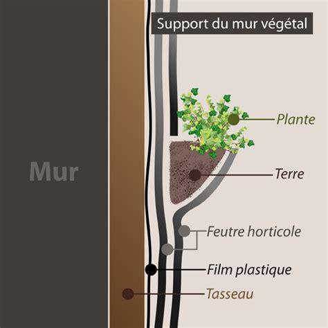 Fabriquer Mur Vegetal by Comment Faire Un Mur V 233 G 233 Tal