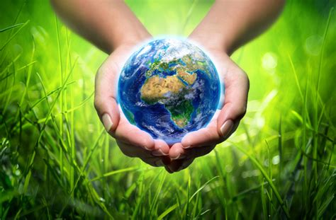 healthy earth earth day 2016 healthy lawn care tips