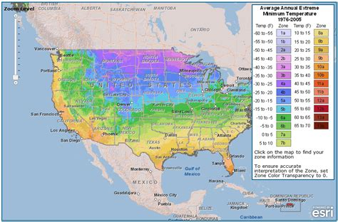 map of the united states broken down into regions determining what to plant gardening 101 young wife s guide