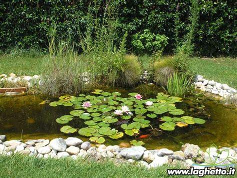 vasi per ninfee vendita piante acquatiche agri pet garden cesto per