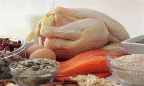 alimenti proteici cibi proteici la lista dei 15 alimenti pi 249 ricchi di
