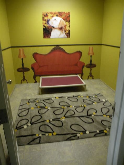 luxury dog boarding suite inspiration dogs hotel