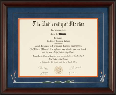 Uf Time Mba Business Major by Of Florida Diploma Frame With Swimming Gator