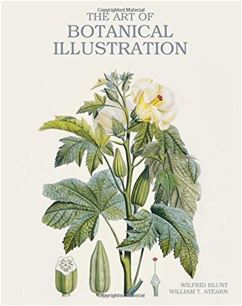 golden age of botanical golden age of botanical art arte cinema e fotografia panorama auto