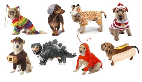 puppy pals costume top 20 best costumes for in 2017 heavy