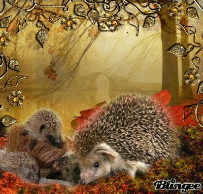 Angenehme Nachtruhe Bilder by Hedgehog Family Picture 131067877 Blingee