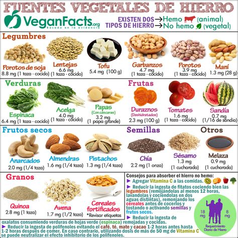alimento vegano alimentos vegetales ricos en hierro por cada 100 gramos en