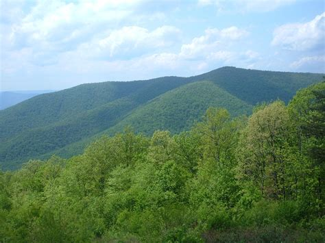 Blue Knob Mountain by Knob Mountain