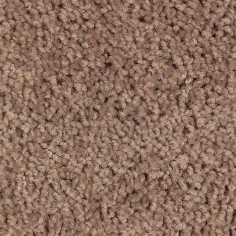 home decorators collection carpet sle palace i color sargent texture 8 in x 8 in ef how to get chocolate milk out of carpet jonlou home