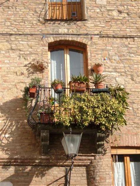 giorgine fiori la finestra di stefania idee e foto di finestre fiorite