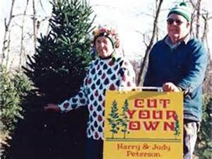 a guide to cut your own christmas tree farms 171 wcco cbs