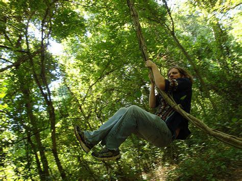 swinging vine swinging on a vine flickr photo sharing