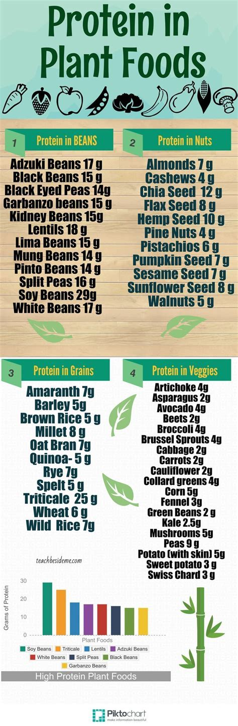 Protein For Detox Diet by 17 Best Ideas About Vinegar Weight Loss On