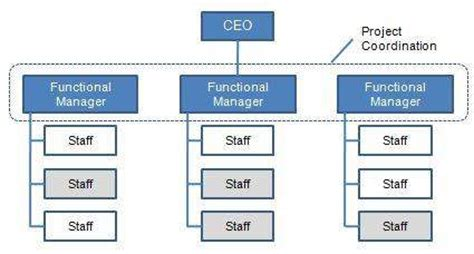 Mba Functional Management 1 Pdf by Bill Gates A Great Leader Organization Structures Part 1