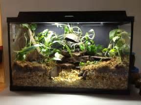 Frogs 'n' Things Deluxe Waterfall Setup (w/ Optional Heater)   Tank