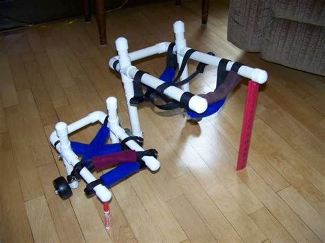 wheelchairs for dogs 16 best images about wheelchair on physical therapy wheels and for dogs