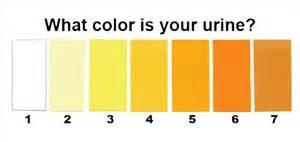 orange colored urine 302 found