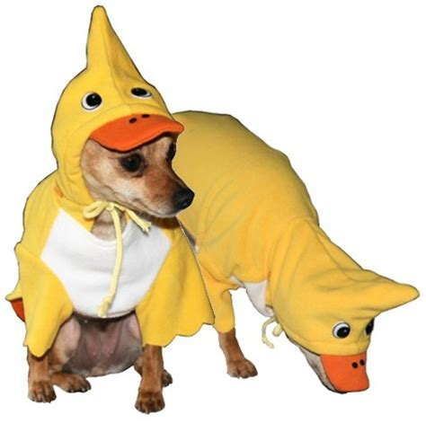 duck puppy duck costume costumes posh puppy boutique