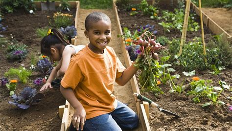 Gardening With Toddlers Gardening With