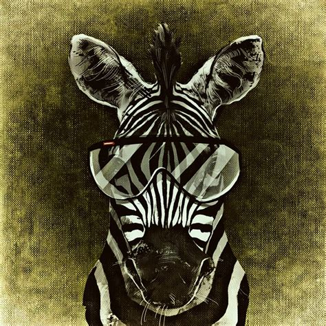imagenes be cool free illustration zebra cool abstract funny free