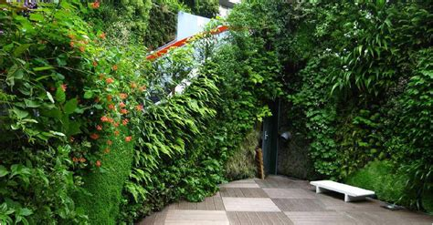 speisekammer verwalten app vertical garden nz plants on walls vertical garden