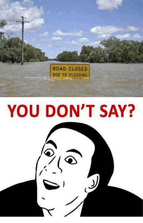 Memes About Memes - road closed due to flooding you don t say meme on me me